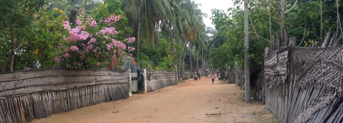 Things To Do In Kalpitya, Sri Lanka